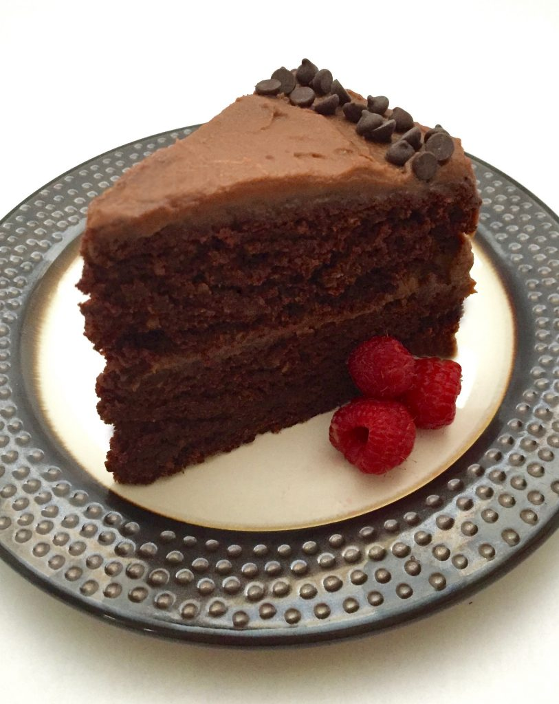 Vegan Chocolate Layer Cake-Gabrielle Panepinto Reiser1