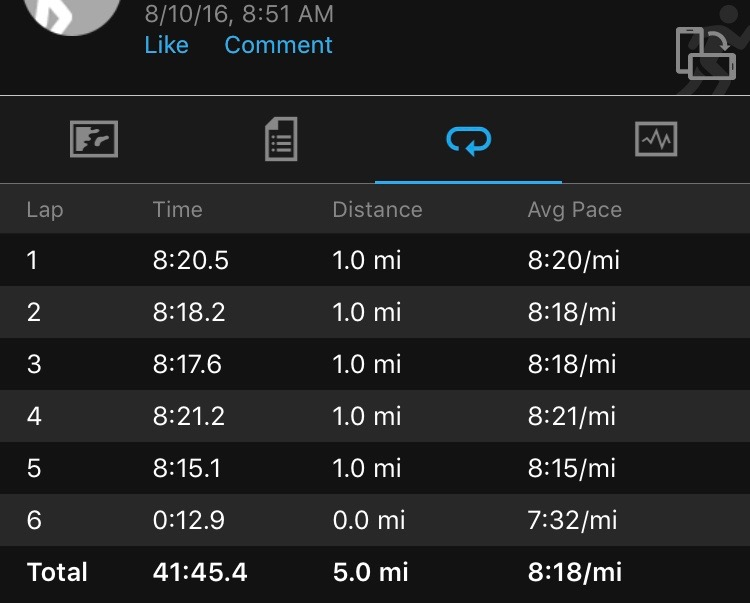 Steamtown Marathon Training 2016 - Week 6 - Dealing with the Dog Days of Summer 3- runcooklaugh.com